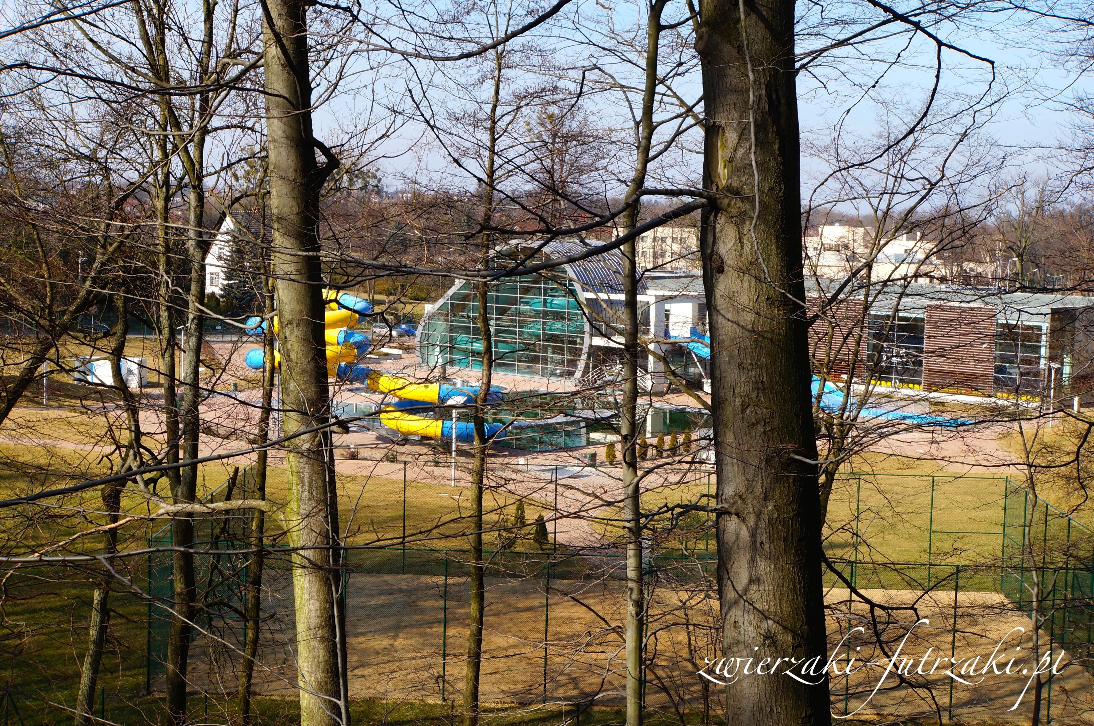 Trzebnicki Park Wodny Zdrój